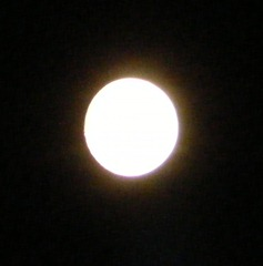 full moon 11.8.11a
