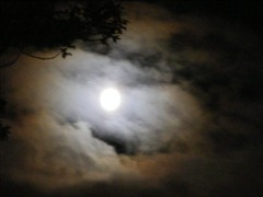 fullmoon cloud 11.8.11