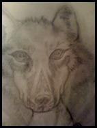 wolf moon january