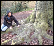 greeting roots