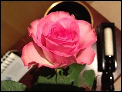 gong and rose