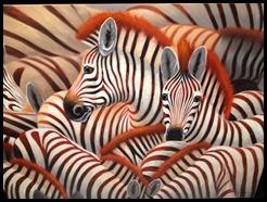 stripes of life