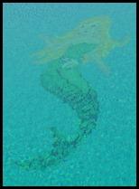mermaids dancing in the water