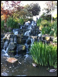waterfall at regents park