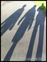 shadows of your life