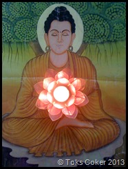 Lotus Light Buddha