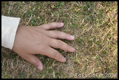earthing hands