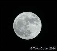 Full Moon by Peter Li