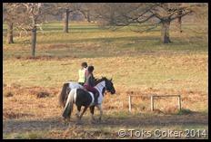 Riders in Richmond Park