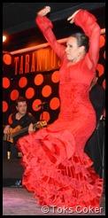 bajari flamenca barcelona determination