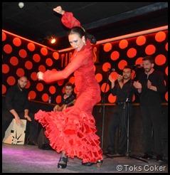 bajari flamenca barcelona focus