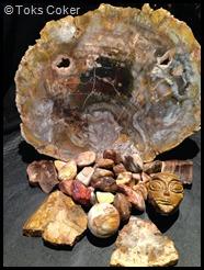 Fossilsed Wood