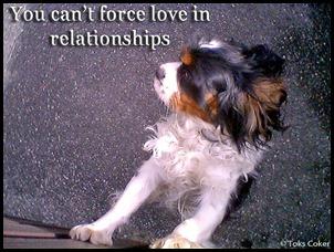 u cannot force love