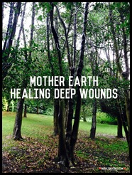 mother earth heals deep wounds