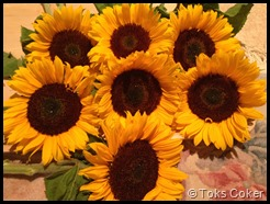 7 Sunflowers