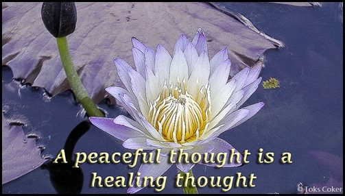 Peaceful thought Healing thought