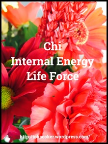 chi internal energy life force