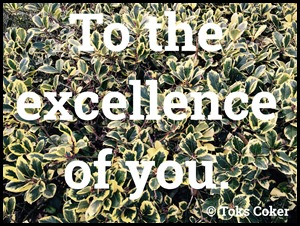 excellence of you