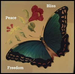 peace freedom bliss