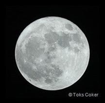 Full Moon Toks