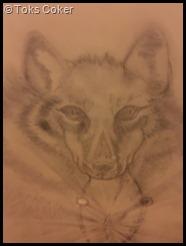 dog fox wolf